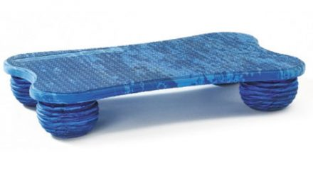 Soft Boards' Design Seeks to Enhance Balance Training