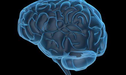 Stroke Study Sheds Light on Inflammasomes' Involvement in Brain Injury